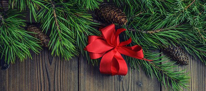 Schossberghof-Header-Oeffnungszeiten-Weihnachten