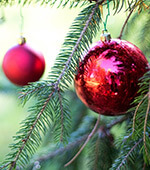Schossberghof-Oeffnungszeiten-Weihnachten
