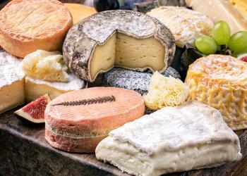 Schoßberghof Bio-Käse
