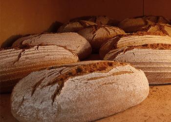 Schoßberghof Brot selbstgebacken Steinofen